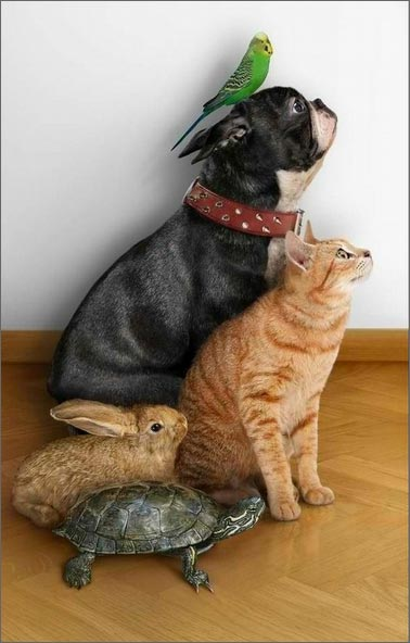 Отношения с другими людьми
