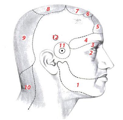 Постоянная головная боль: причины по Аюрведе