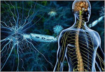 Рассеянный склероз: психосоматика болезни