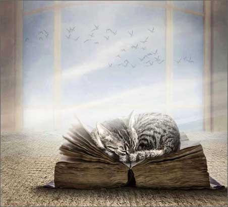 Важные знания для жизни