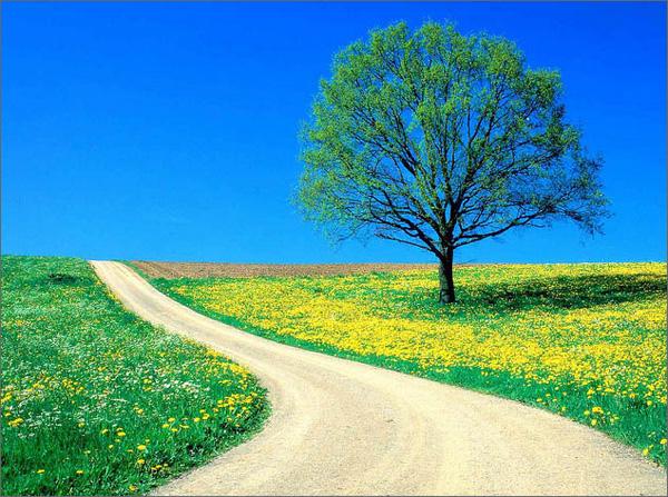 Духовный Путь — Освобождение Сознания