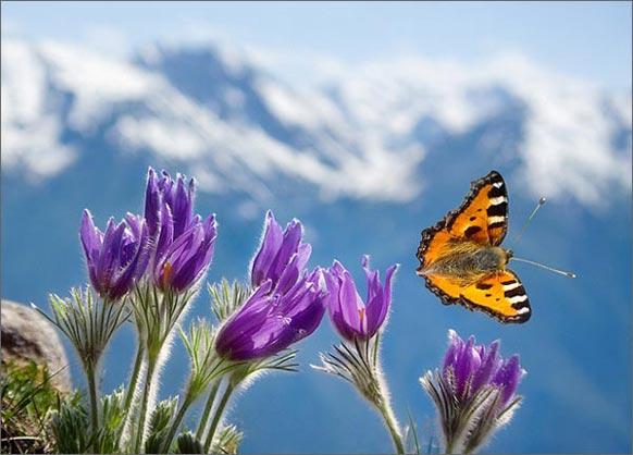 ЖИТЬ ВМЕСТЕ С БОГОМ. Жизнь как духовная практика