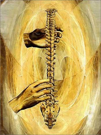Психосоматика ПОЗВОНОЧНИКА и болезней спины. Часть 1 (в 5-и частях)