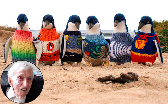 Самый старый австралиец одевает маленьких пингвинов