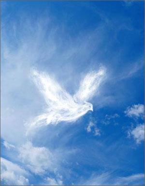 Духовные практики семинар - Карпаты
